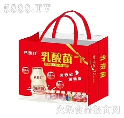 钙动力乳酸菌饮品礼盒