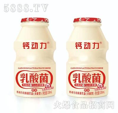 钙动力乳酸菌饮品礼盒108ml
