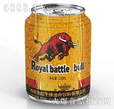 西班牙红牛运动饮料250ml