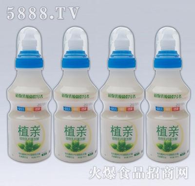 植亲乳酸菌原味4瓶装