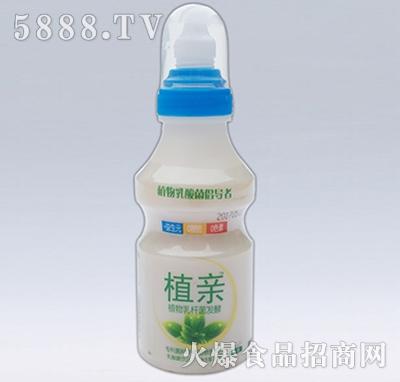 植亲乳酸菌原味单品