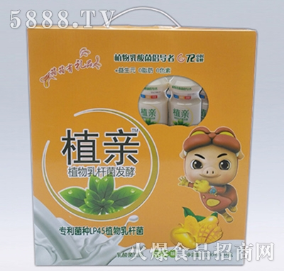植亲乳酸菌芒果味礼盒装