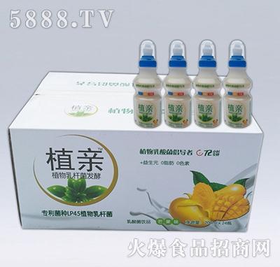 植亲乳酸菌芒果味箱装