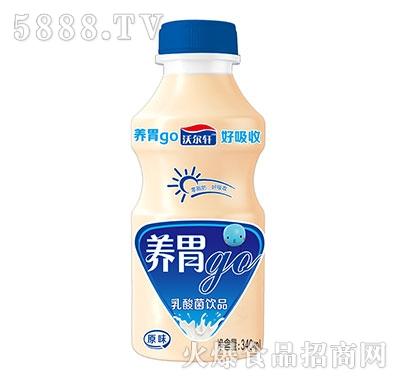 养胃go乳酸菌原味340ml