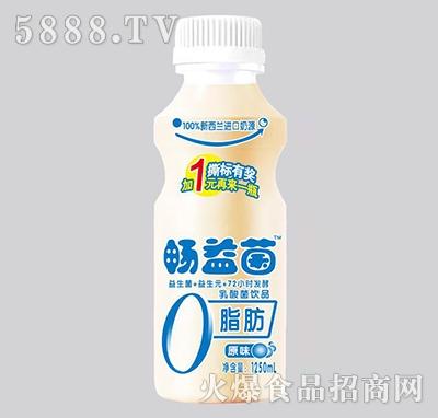畅益菌乳酸菌饮品原味1250ml
