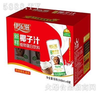 伊乐滋椰子汁248mlx6罐产品图