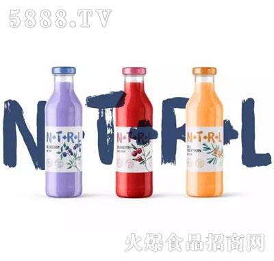 圣玺诺NFC乳酸菌复合果汁