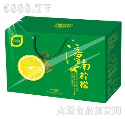 汇达柠檬柠檬饮料绿礼盒