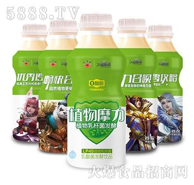 太子奶植物摩力乳酸菌发酵乳饮料