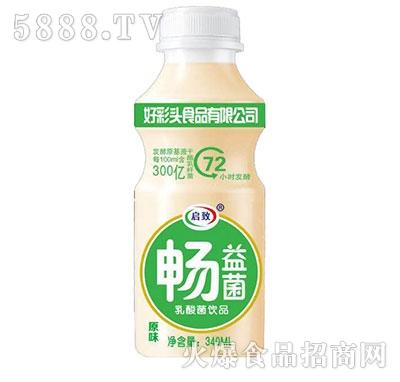 畅益菌乳酸菌饮品原味340ml