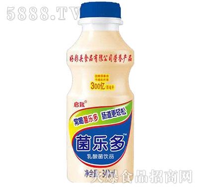 菌乐多乳酸菌饮品340ml瓶装