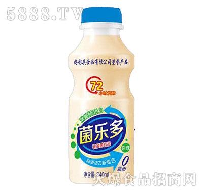 菌乐多乳酸菌饮品瓶装340ml