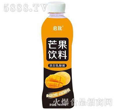 启致芒果乳酸菌饮料500ml