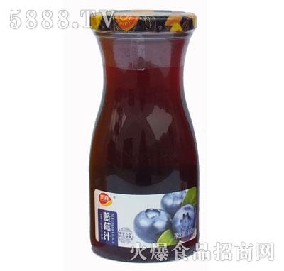 顶真果园蓝莓汁330ml