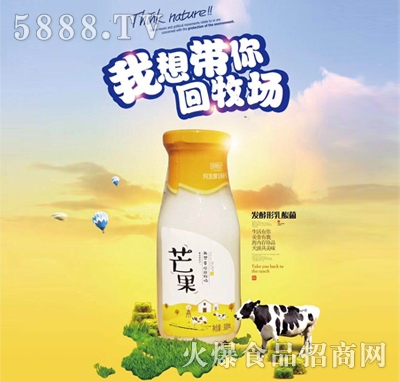 味畅舒芒果味发酵型乳酸菌饮品330ml