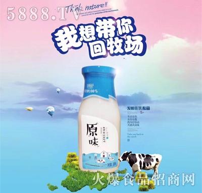 味畅舒原味发酵型乳酸菌饮品330ml