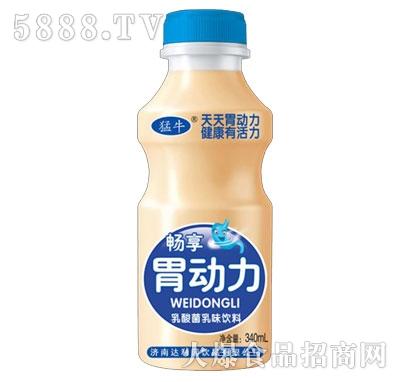 蒙牛胃动力乳酸菌乳味饮料340ml