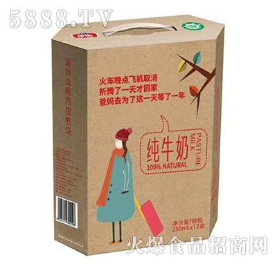 伊怡纯牛奶250mlx12盒产品图