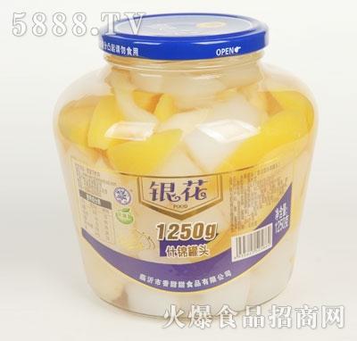 银花什锦罐头1250g