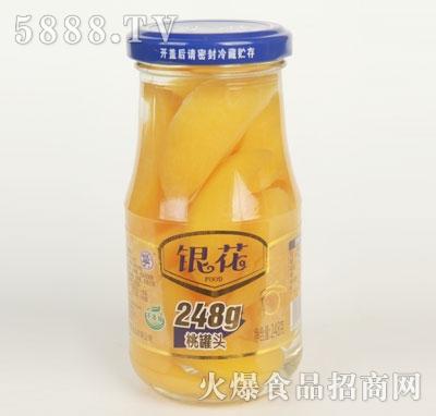 银花桃罐头248克