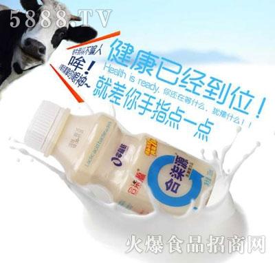 合柒源乳酸菌饮料(瓶装)
