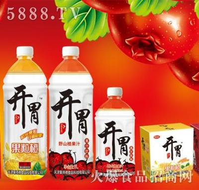 果润心果肉果汁饮料
