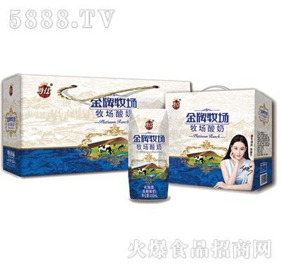 尊仕金牌牧场酸奶200mlx12盒产品图