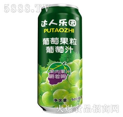 达人乐园葡萄果粒葡萄汁500ml