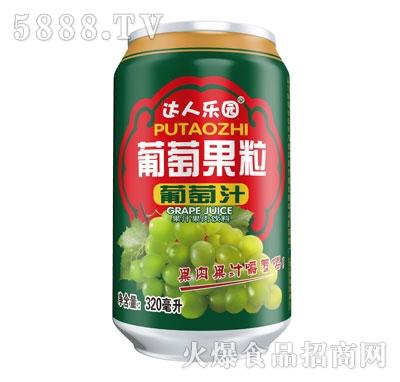 达人乐园葡萄果粒葡萄汁320ml