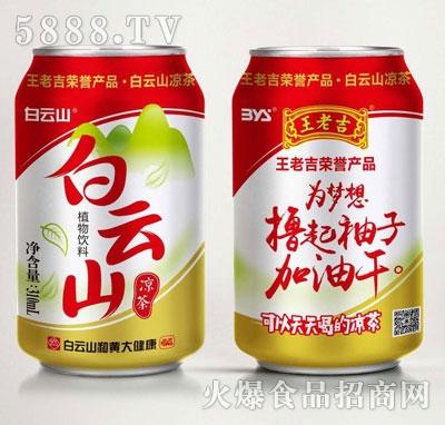 白云山凉茶植物饮料310ml