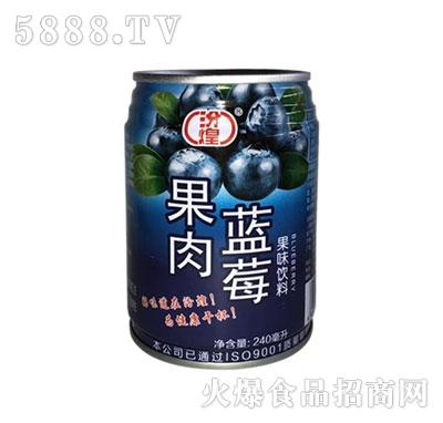 汾煌蓝莓果肉饮料240ml