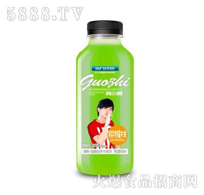 三九饮品简小帅猕猴桃乳酸菌复合果汁饮料450ml
