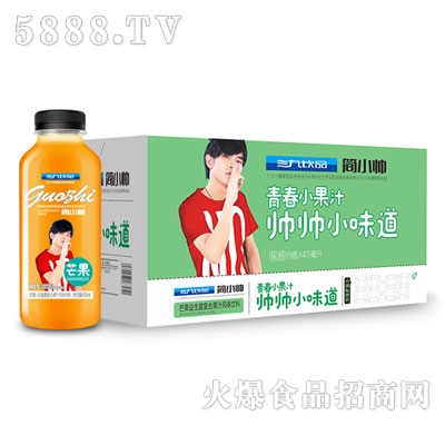 三九饮品芒果益生菌复合果汁风味饮料410mlx15瓶