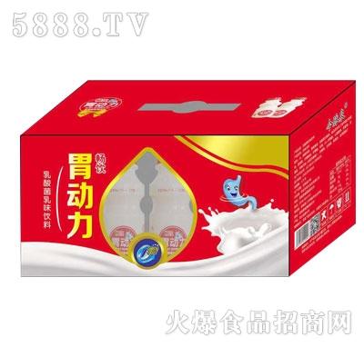 畅饮胃动力乳酸菌乳味饮料(箱)