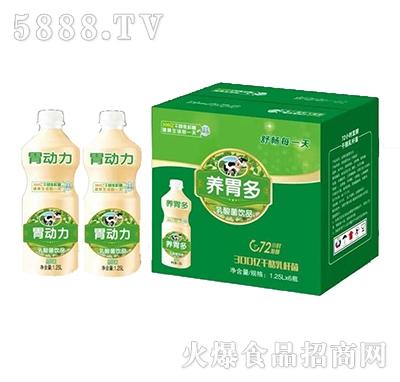 养胃多乳酸菌饮料1.25Lx6瓶