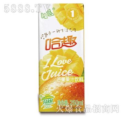 哈趣芒果果汁饮料250ml
