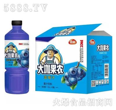 团友大咖果农蓝莓汁饮料1.5L