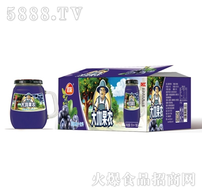 团友大咖果农蓝莓汁饮料
