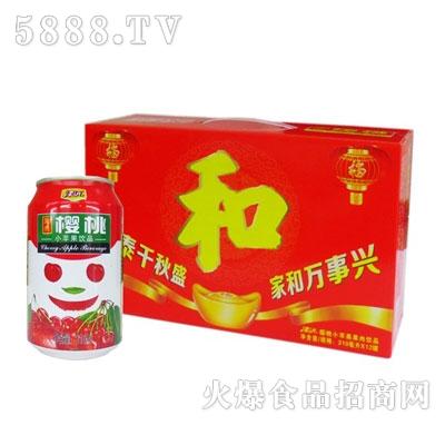 津沅樱桃小苹果310mlx12