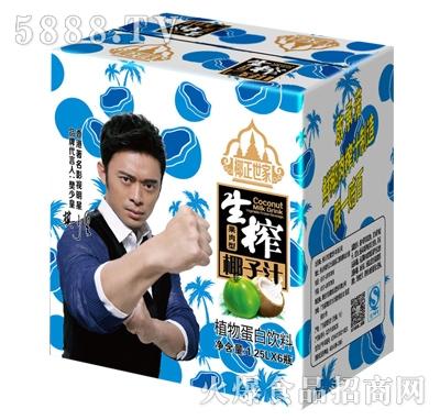 椰正世家生榨椰汁植物蛋白饮料1.25Lx6瓶
