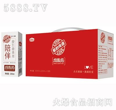伊怡烧酸奶1x12盒
