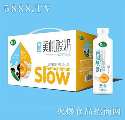 植卫黄桃酸奶饮品310mlx10瓶