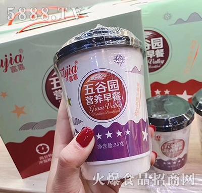 富嘉五谷园营养早餐饮品35克