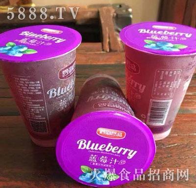 恩海食品蓝莓汁