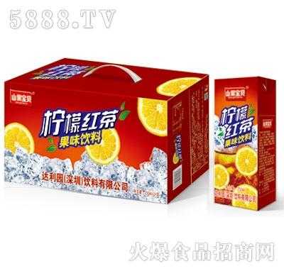 山果宝贝柠檬茶果味饮料250mlx24盒