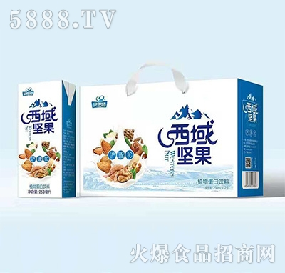 伊思特西域坚果植物蛋白饮料250mlx12盒