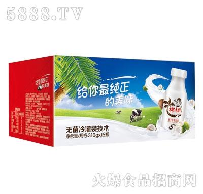 椰桐椰子牛乳饮品310gX15