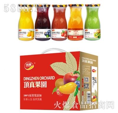 顶真系列果汁饮品