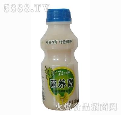 菌养胃发酵乳酸菌饮品338ml