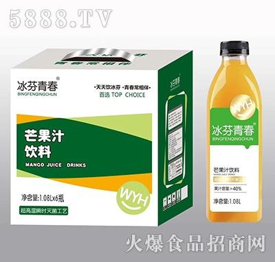 冰芬青春芒果汁饮料1.08Lx6瓶